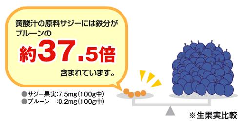 サジーのアスパラギン酸の含有量