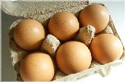 らでぃっしゅぼーやで届いた卵