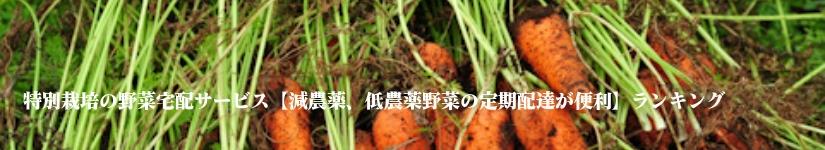 特別栽培の野菜宅配サービス【減農薬、低農薬野菜の定期配達が便利】