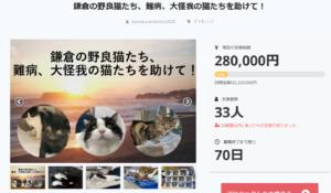 鎌倉猫らいんCF